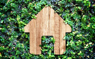 Tips for Having an Eco-Friendly Home