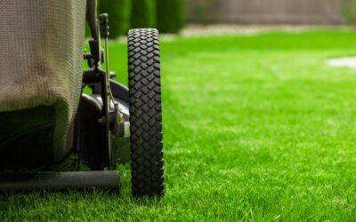 Best Lawn Mowing Practices