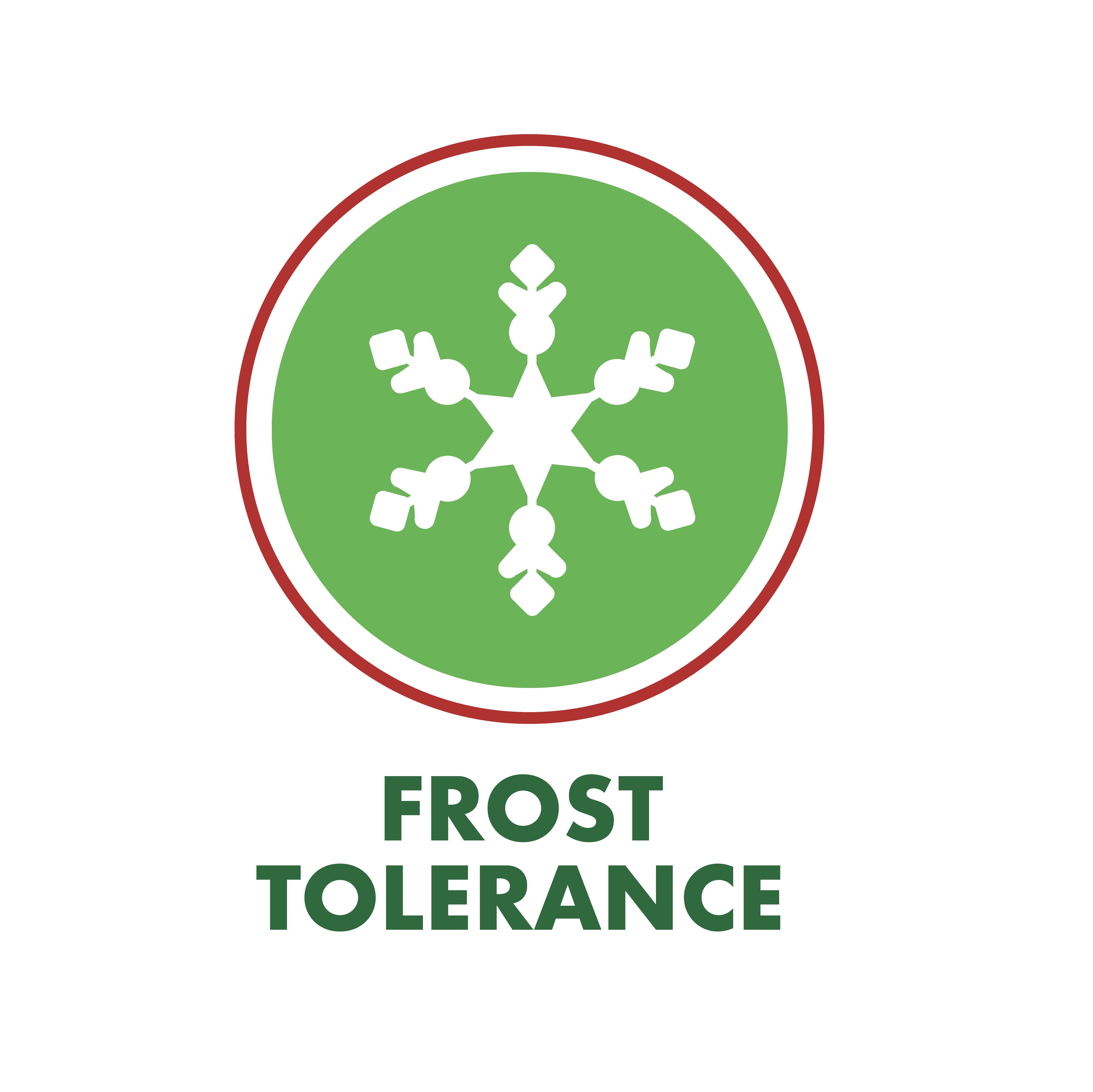 Frost Tolerance