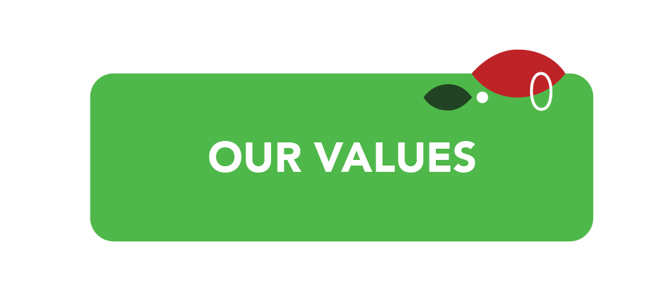 values advance turf icon