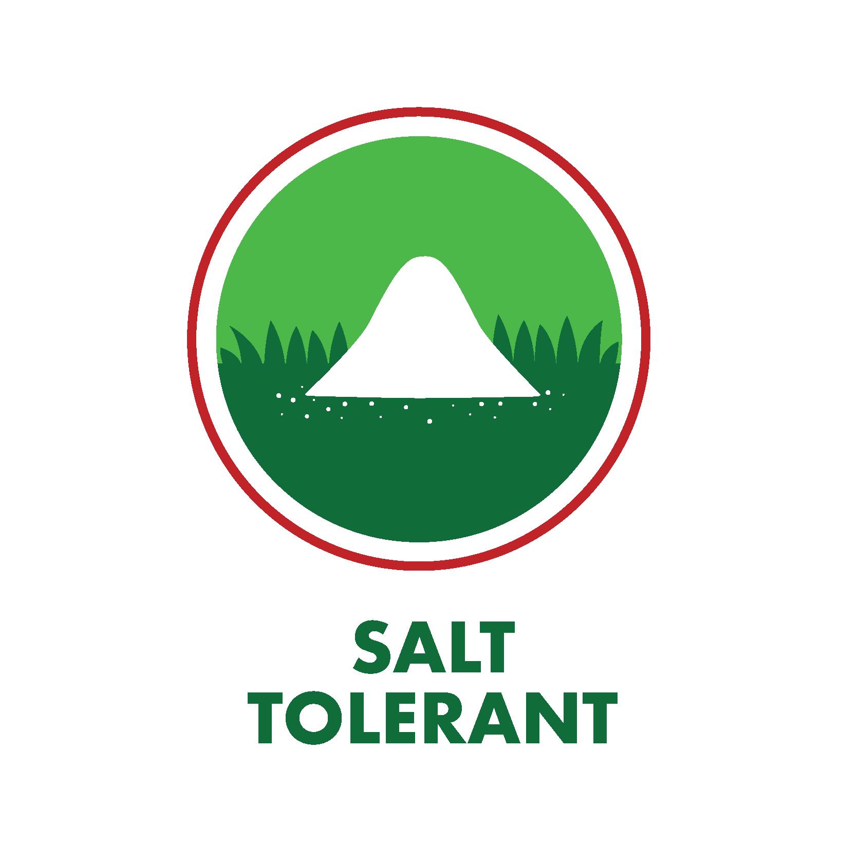 Salt tolerance