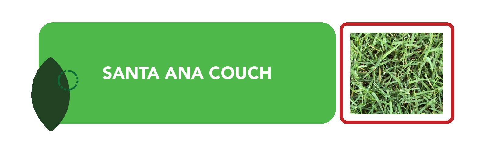 Santa Ana Couch