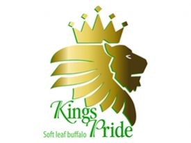 kings-pride-logo-for-cart-jpg