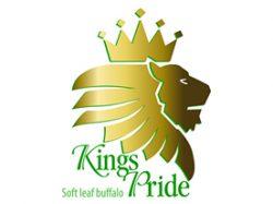 kings-pride-logo-for-cart-jpg