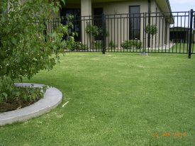 wintergreen-couch-kerang-3-jpg